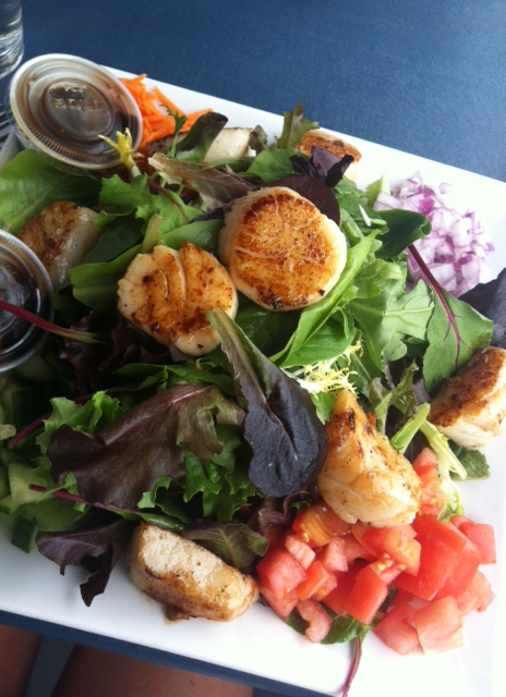 Grilled scallops on Greens in Provincetown