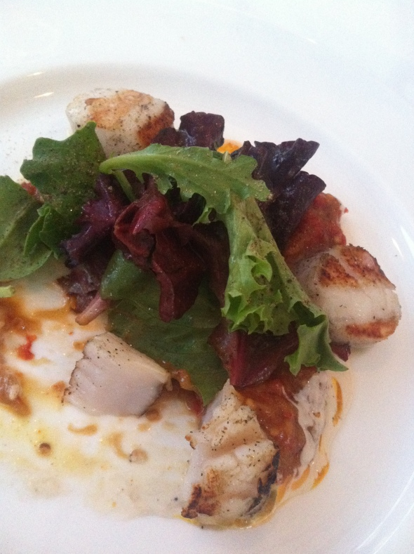 Grilled scallops on salad greens