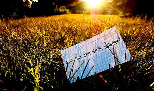 Love___-can-you-still-feel-the-butterflies