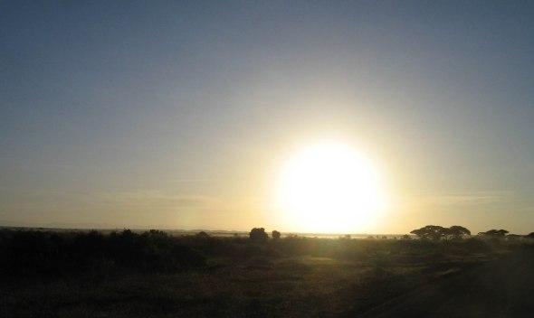 Sonnenaufgang-Amboseli