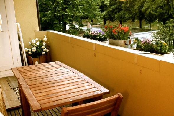 Balcony with rain but flowers #letsseehowlongtheylive